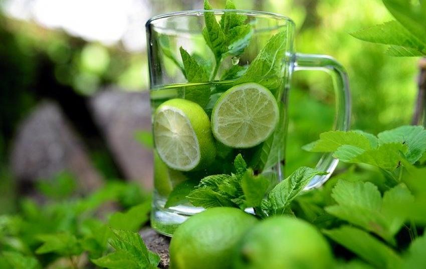 Эксперты рекомендуют ежедневное питье воды с мятой