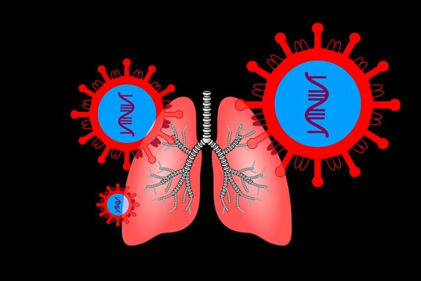 Обнародованы результаты вскрытия первого умершего от коронавируса