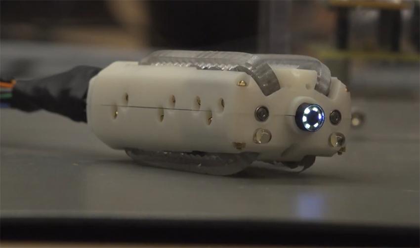 Устройство для исследования толстой кишки с целью автоматической визуализации и биопсии полипов